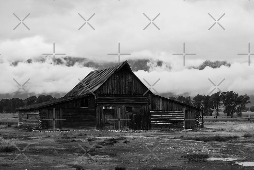 Forgotten Barn by Gwright313
