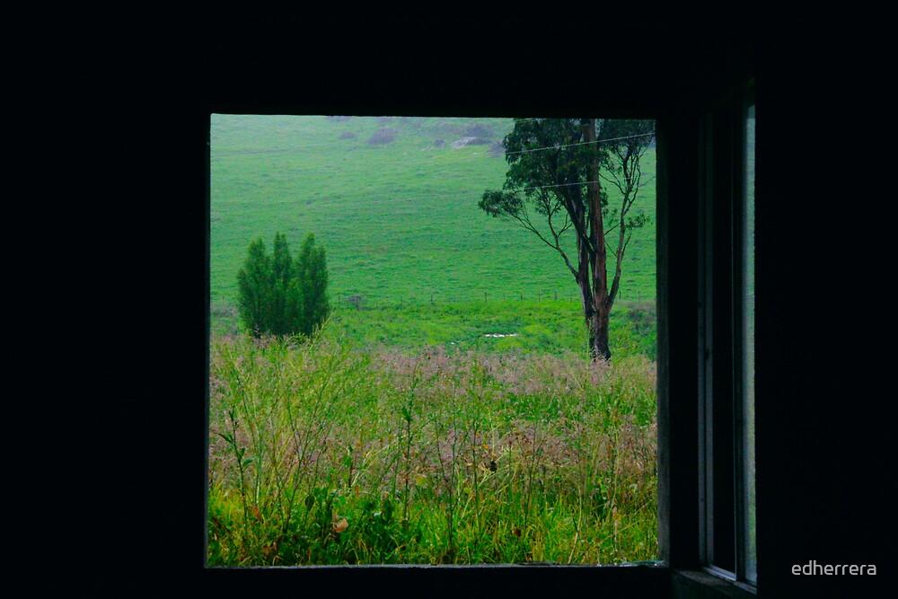 ventana  by edherrera