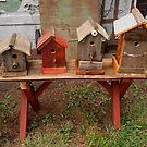 Birdhouses by Barbara Wyeth