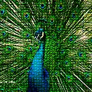 ~ ROYAL MOSAIC PEACOCK ~ by Madeline M  Allen