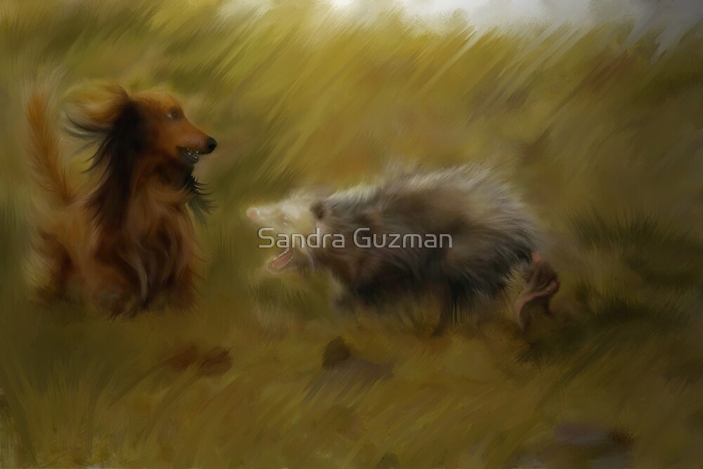 Winner Dog? by Sandra Guzman
