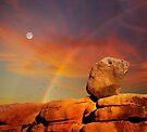 Moonstruck by Alex Preiss