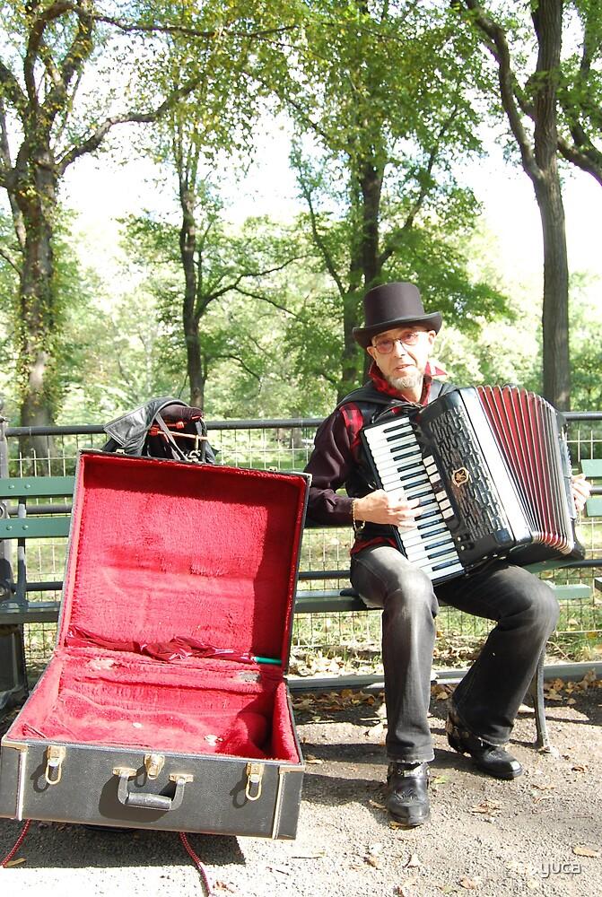 accordion by yuca