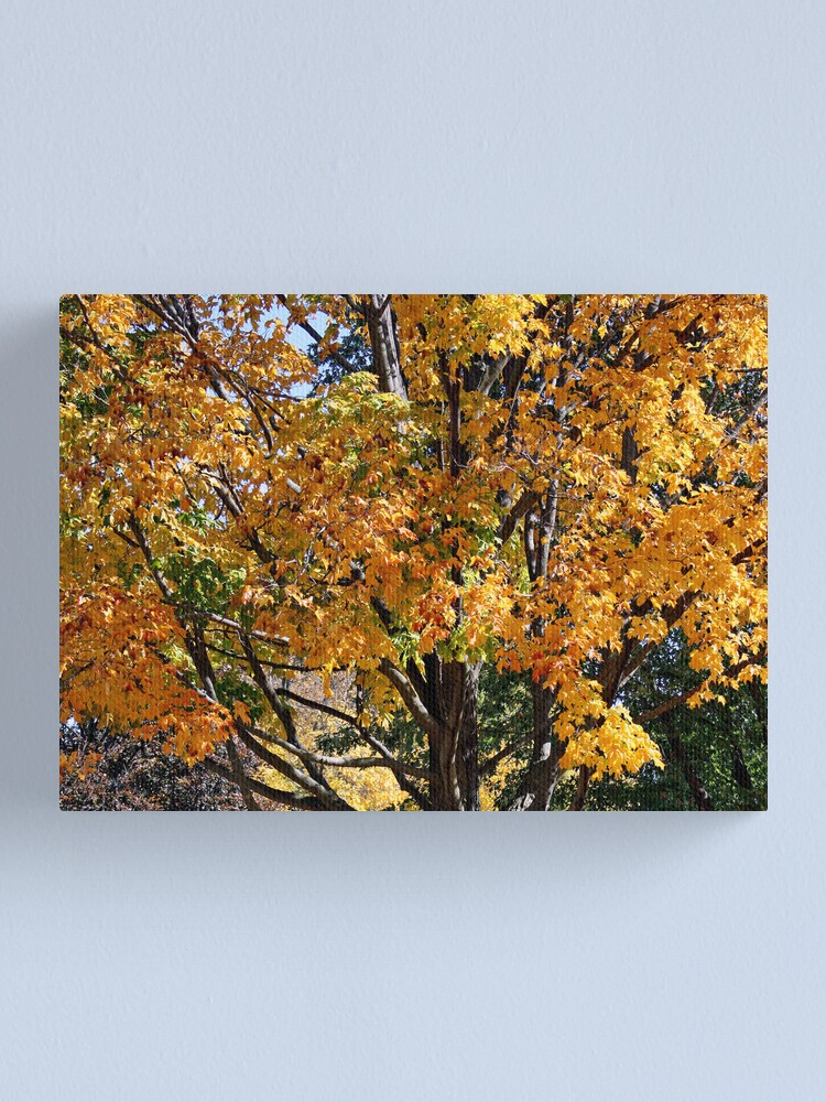 Alternate view of Autumn Canvas Print