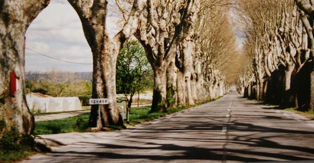 Road to Les Baux de Provence. by zangi12