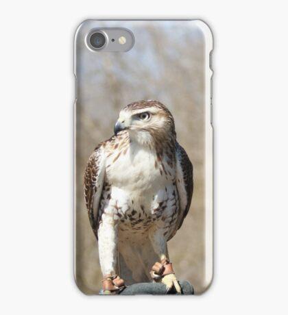 Red Shoulder Hawk iPhone Case/Skin