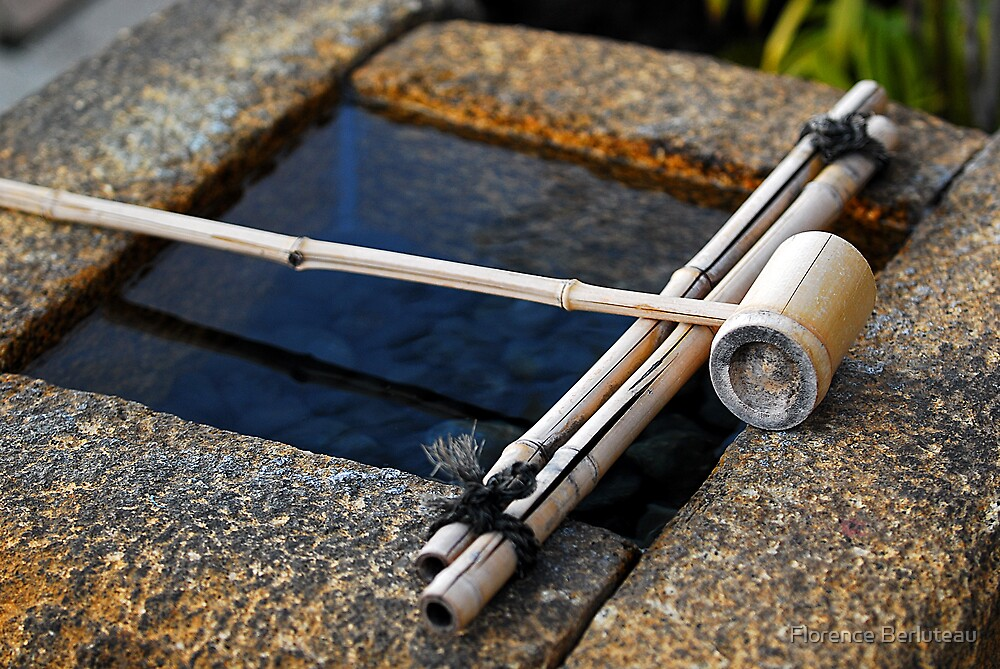 Bamboo Dipper, Kyoto by Florence Berluteau