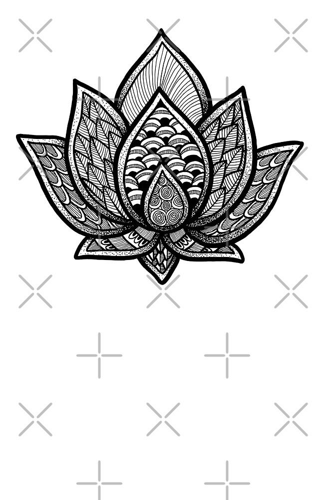 Lotus by Melanie Peterson