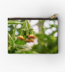 Withered Asteraceae Studio Pouch