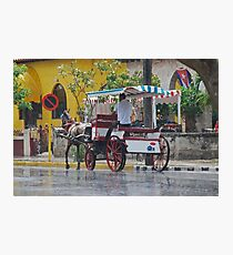 Horse and Cart Photographic Print