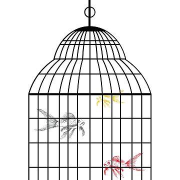 fish koi in cage by dai-dai