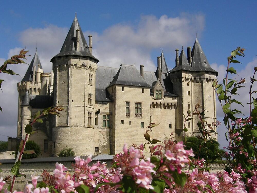 Wonder castle by Marina Ribeiro
