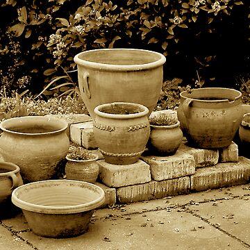 Pots of pots! by newbeltane
