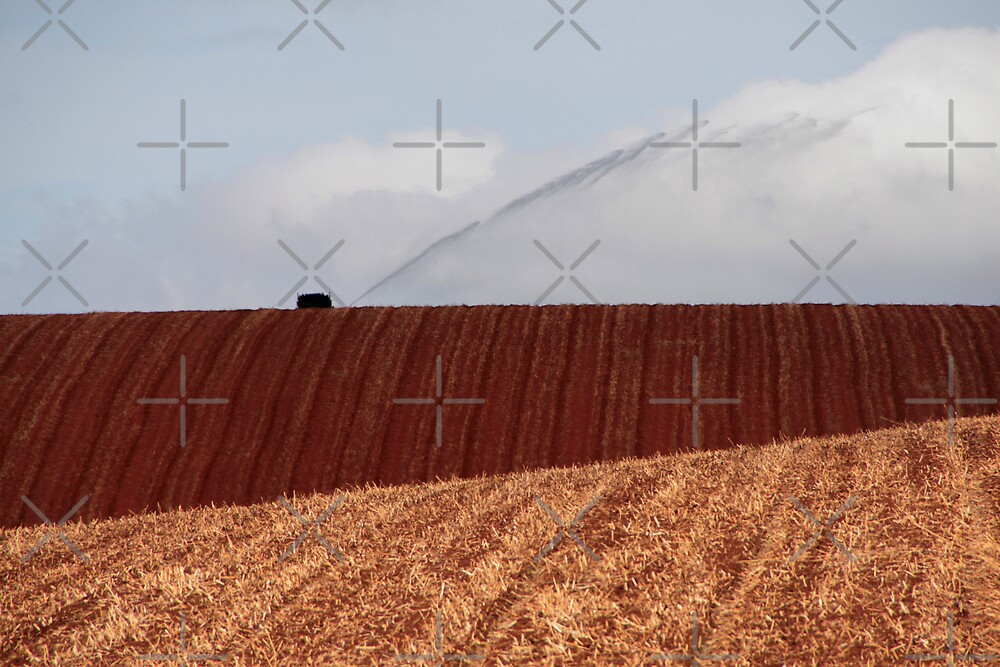 Irrigation by Adrianne Yzerman