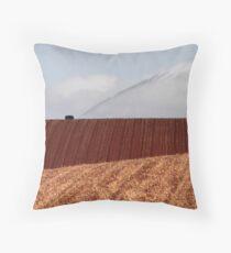 Irrigation Throw Pillow