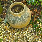 Large pot, Beth Chatto Gardens by newbeltane