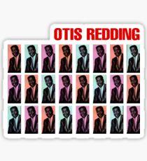 Aretha Redding Sticker