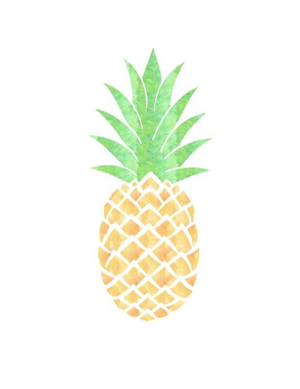 pineapple adaption Pineapple warrior adoption center on scratch by hawkfrostpineapple.