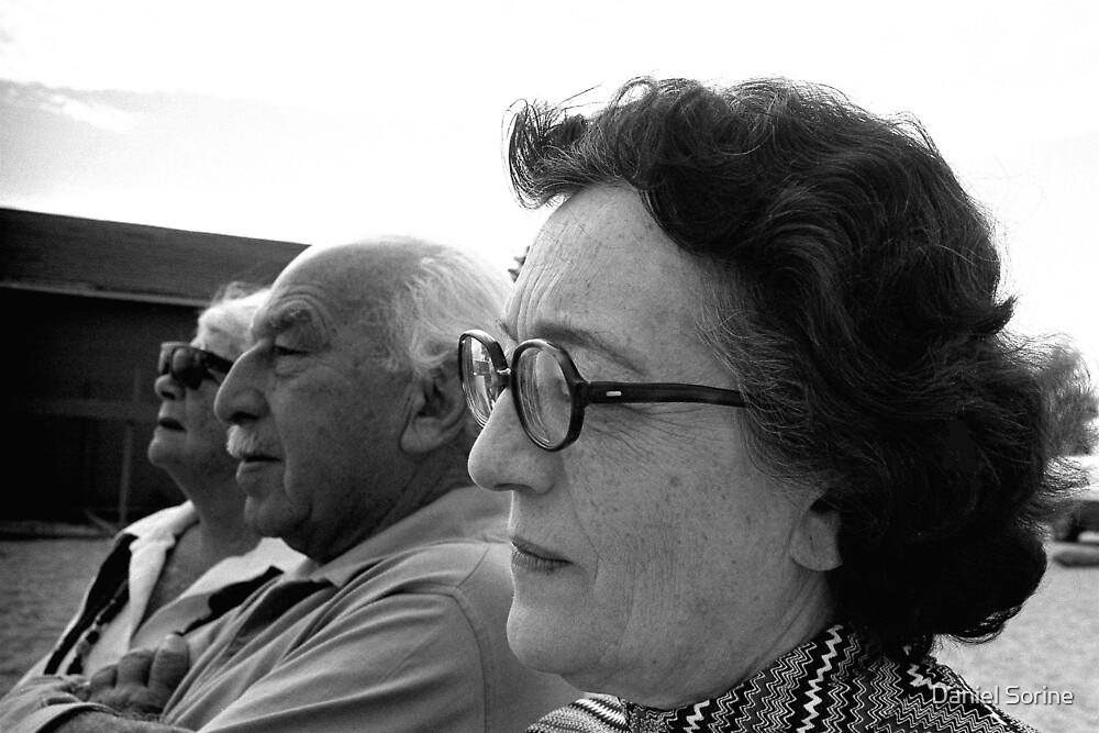 Old friends by Daniel Sorine