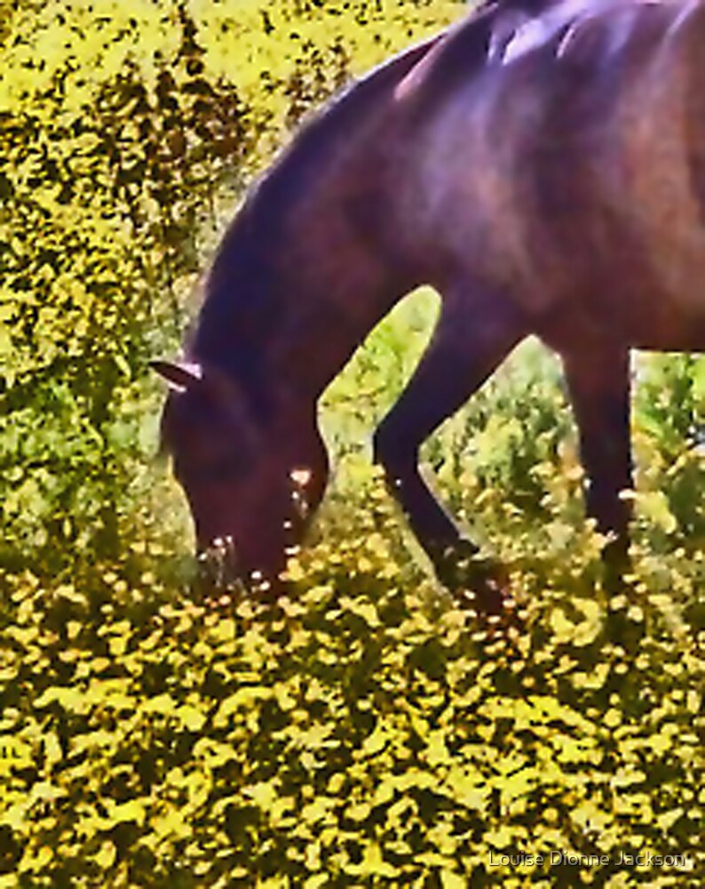buttercup horse by Louise Dionne Jackson