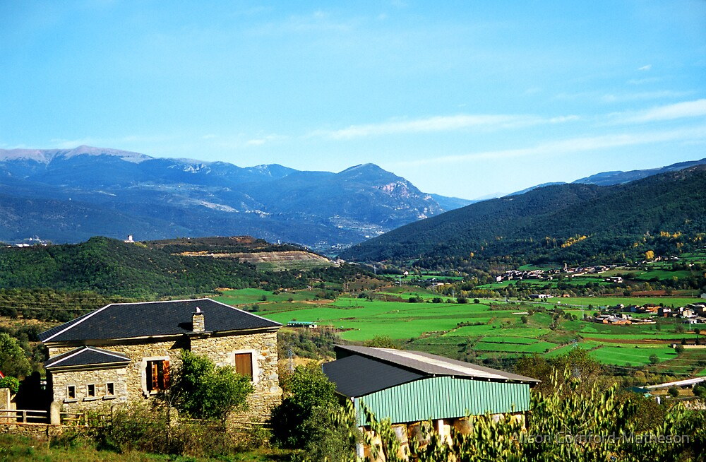 Farms in the Pyrenees by Alison Cornford-Matheson