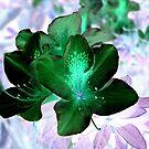 Green In The Garden by TerraChild