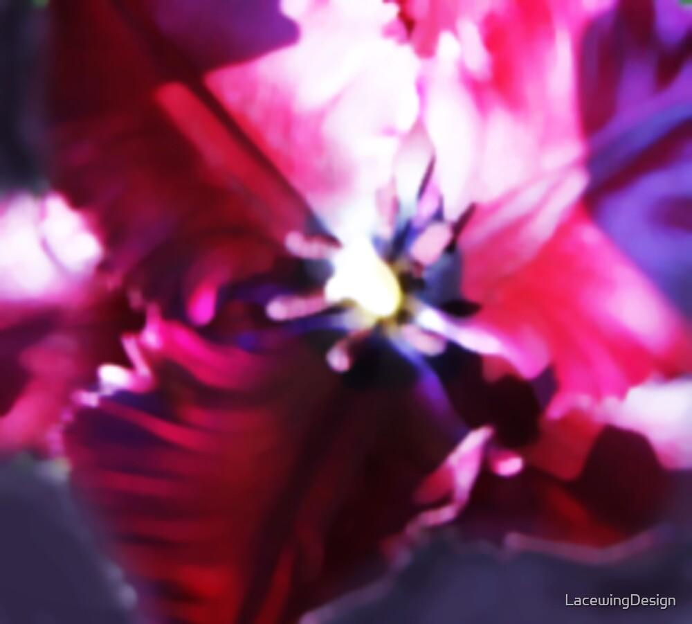 OPEN BLACK PARROT TULIP by LacewingDesign
