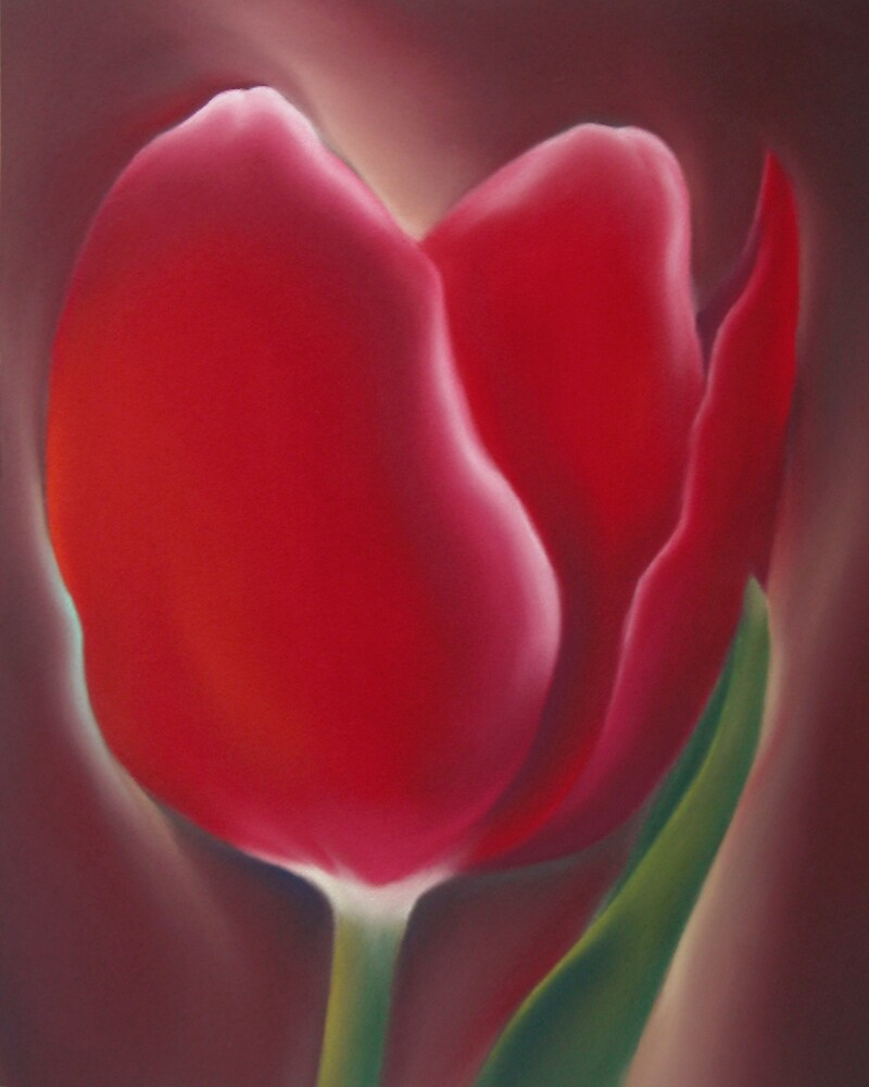 Red Tulip with Green Leaf by Jonathan  Owens