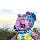 Scott the Bear 1 by pokegirl93