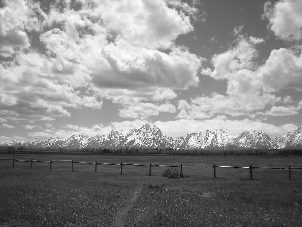 Grand Teton National Park by Elka