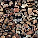 The Wood Pile by Martha Medford