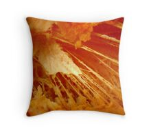 Nano or Macro ?  Throw Pillow