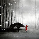 Little Red Riding Hood ~ The Fisrt Touch  by minoule