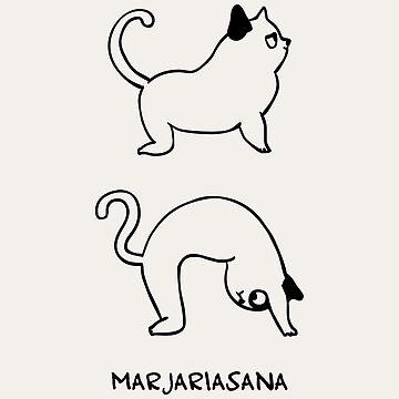 Pose de gato de Huebucket