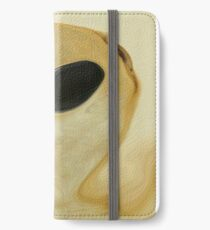 Aliene iPhone Wallet/Case/Skin