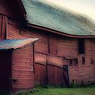 barn swell by Kendall McKernon