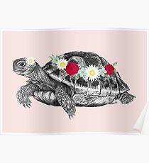 Flower Crown Tortoise Poster