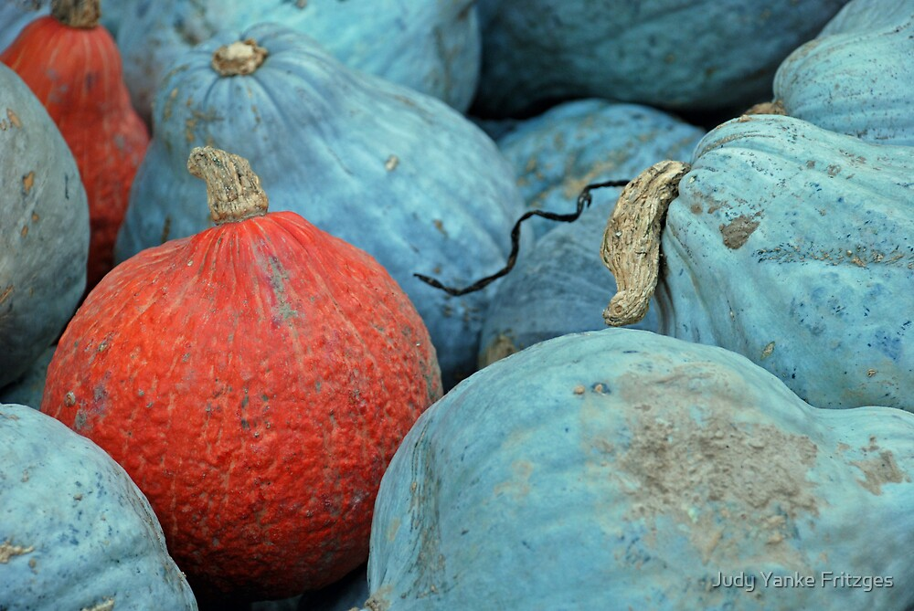 Orange and Blue Pumpkins by Judy Yanke Fritzges