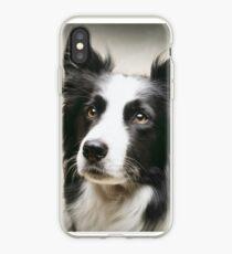 Working Border Collie iPhone Case