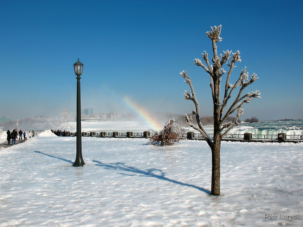 lamp tree and rainbow by Petr Bares