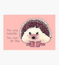 """You Are Capable"" Hedgehog Photographic Print"
