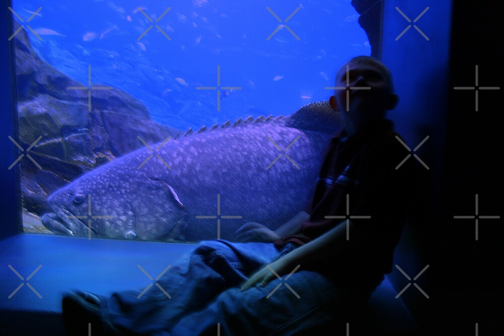 ENORMOUS! by Julie's Camera Creations <><