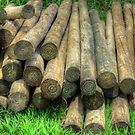Logs Stacked by TJ Baccari Photography