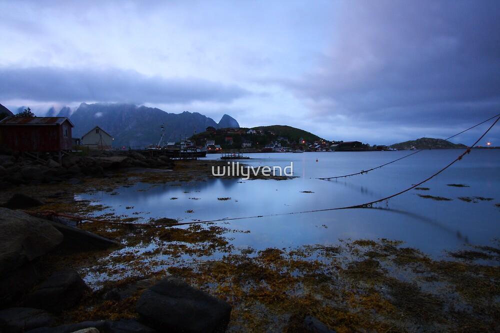 Lofoten Islands by Willy Vendeville