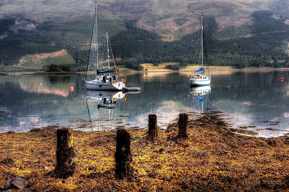 Calmness  by Thistle Images