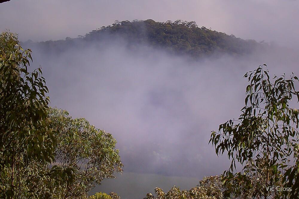 Mountain mist by Vic Cross