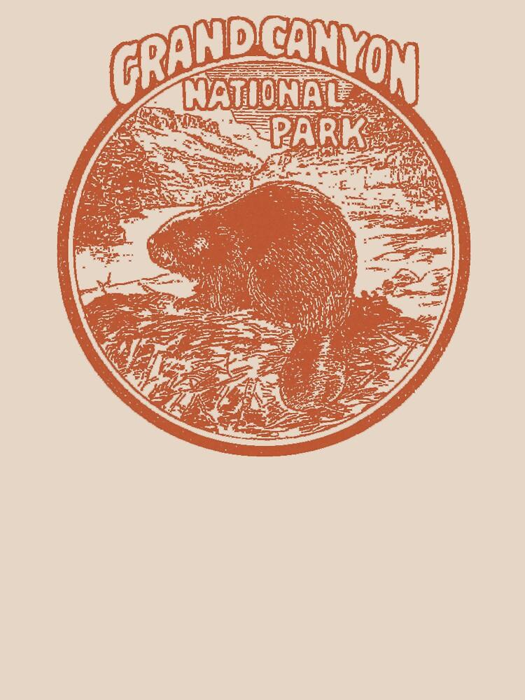 Grand Canyon Beaver National Park Arizona Vintage by hilda74