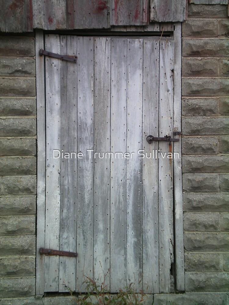 Barn Door by Diane Trummer Sullivan