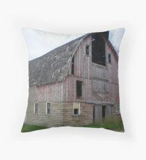 Dang Old Barn Throw Pillow