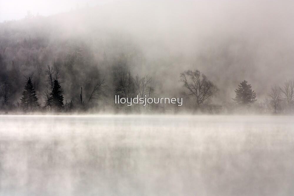 In the Mist by lloydsjourney